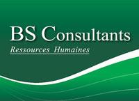 BS Consultants